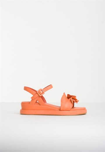 ELVIO ZANON - 0105 - ORANGE